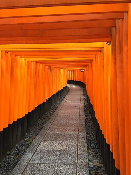 fushimi_inari_shrine